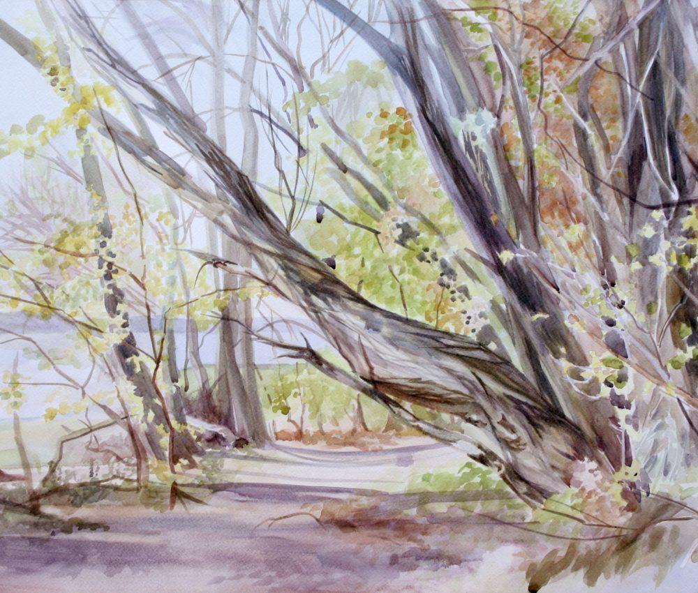 Duna-part ősszel akvarell, papír 40x60 cm 2018.