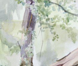 Fa akvarell, papír 29x13 cm 2018.