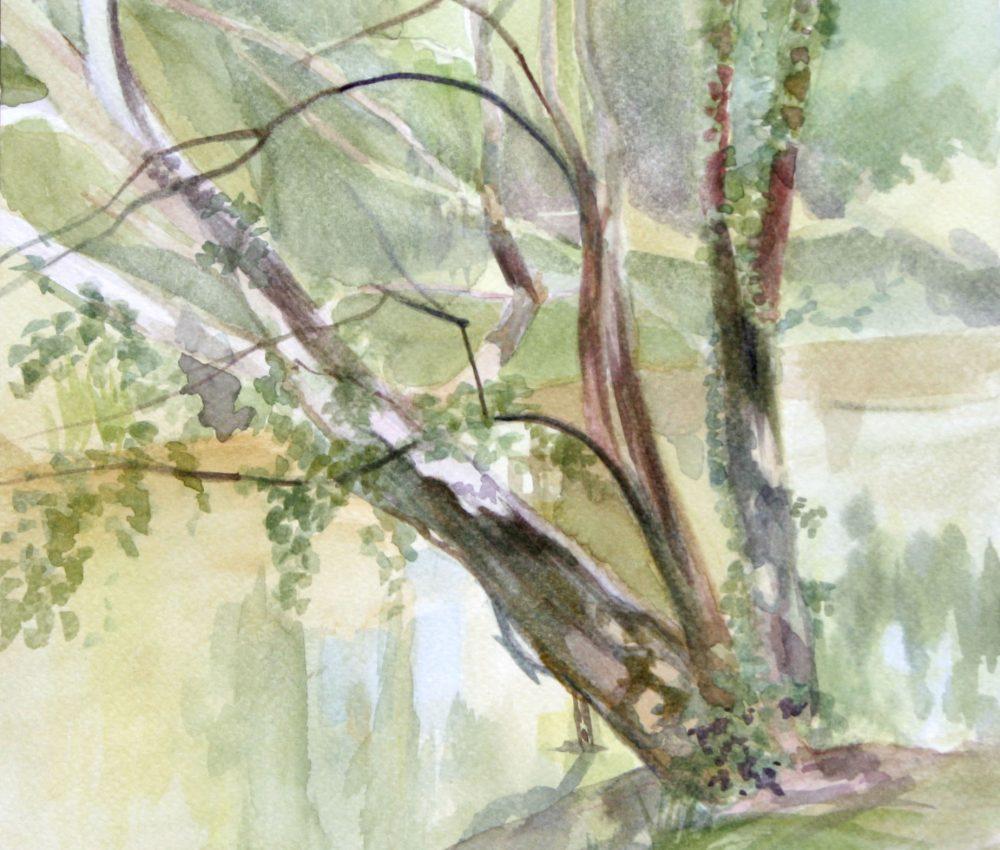 Élővíz csatorna partja( Gyula) 22x22 cm akvarell 2018.