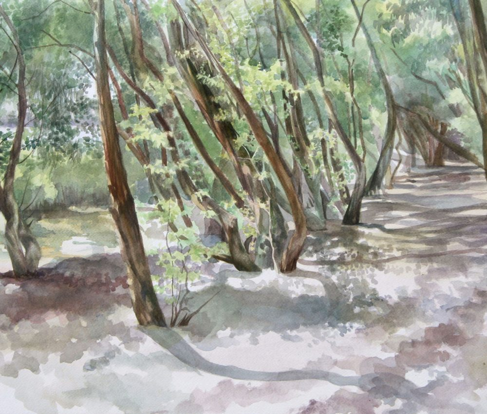 Út akvarell, papír 40x60 cm 2016.