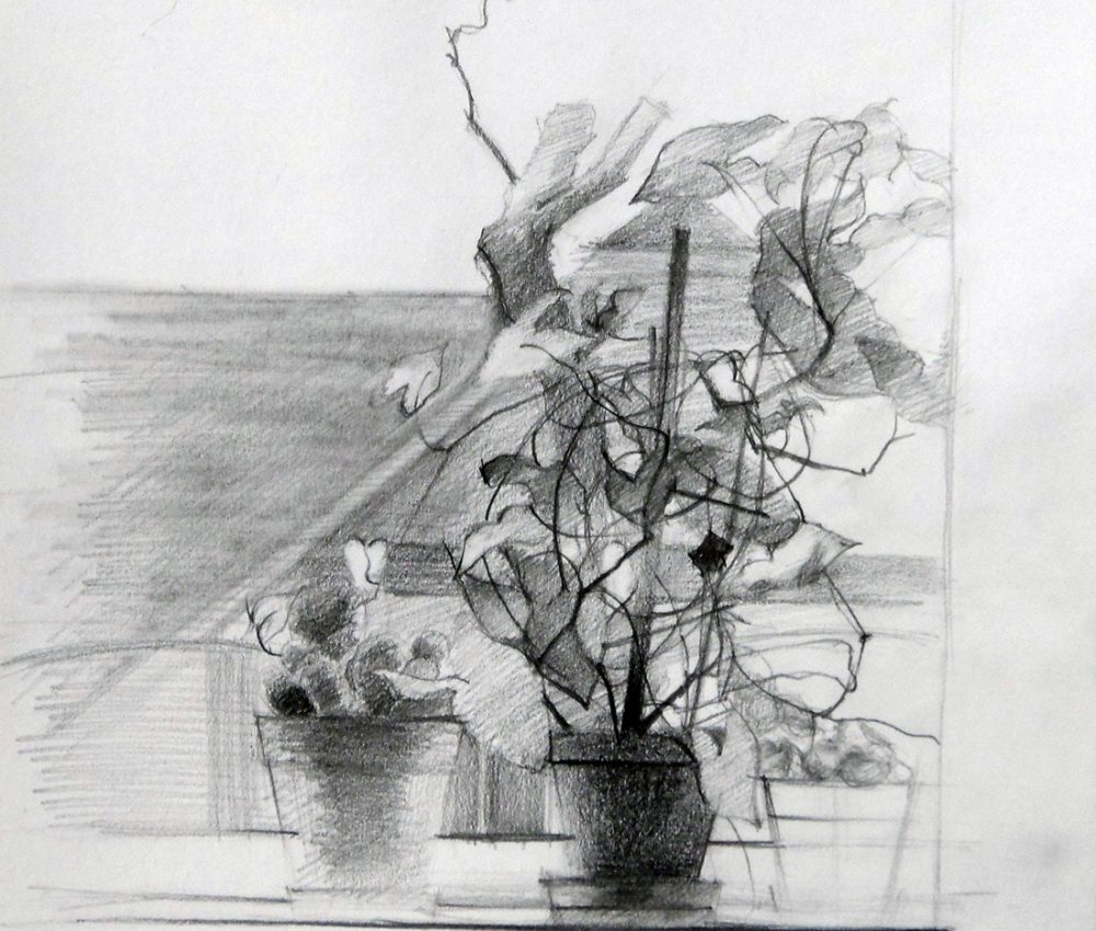 Ablakban ceruza, papír 2013.