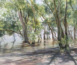Kint van a víz akvarell, papír 40x60 cm 2014.
