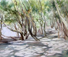 Duna-parti sétány II. akvarell, papír 32 x 44 cm 2013.