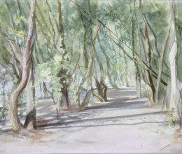 Duna-part I. akvarell, papír 32x44 cm 2012.