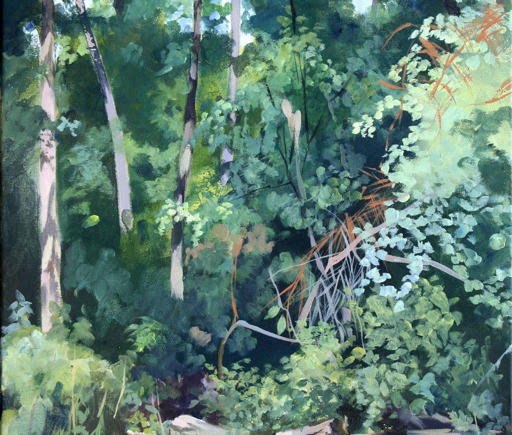 Mogyoródi erdő akril, vászon 60x40 cm 2018.