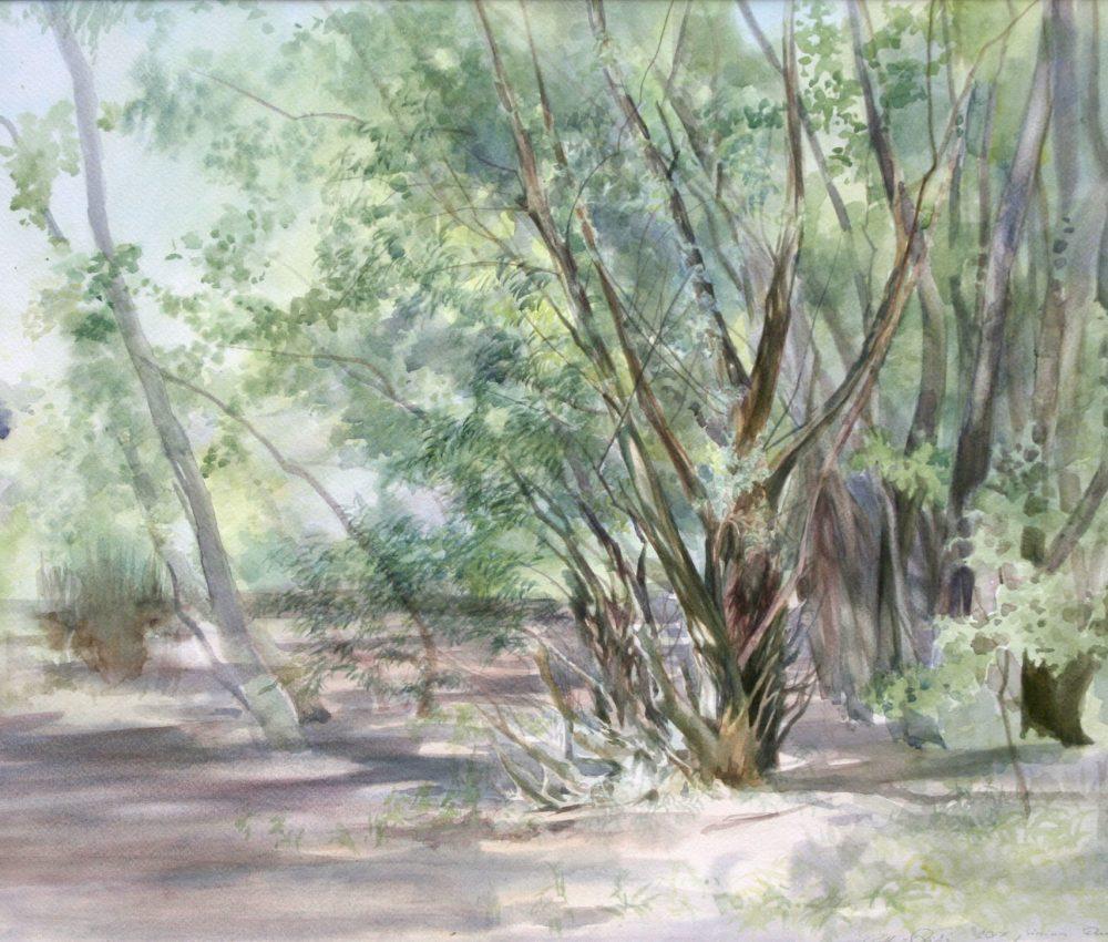 Duna-part júniusban akvarell, papír 40x60 cm 2017.